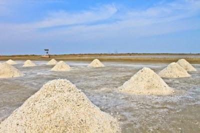 Hvor salt er Store Lungegårdsvann?